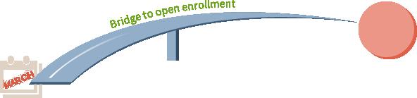 bridge health plans